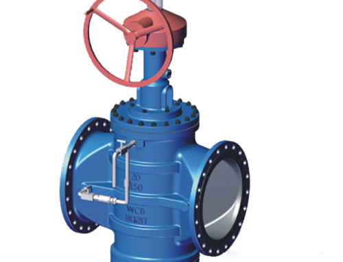 Double Block and Bleed Plug Valve