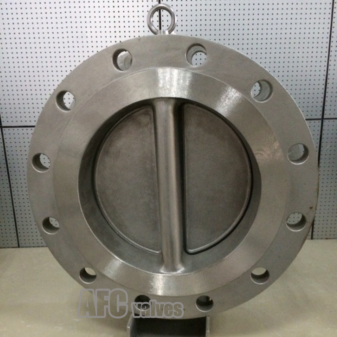 Double Flanged Check Valve